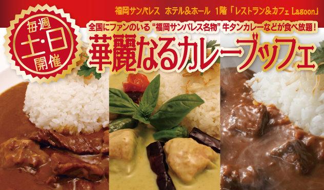 【毎週 土・日 ランチタイム】華麗なるカレーブッフェ