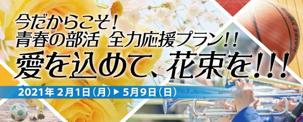 青春の部活 全力応援プラン!!~愛を込めて花束を!!!~
